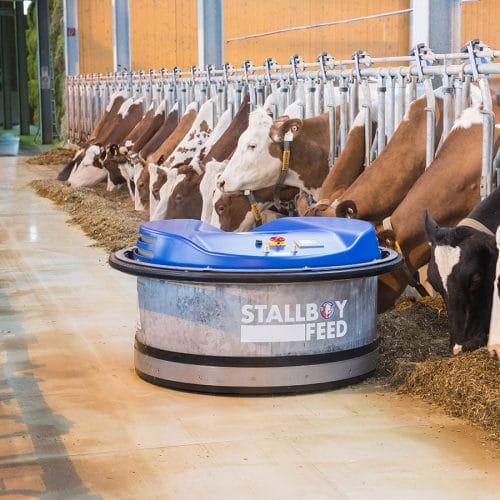 Stallboy feed bei SOMA